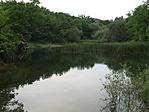 Jági tó