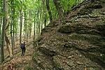 A barlangot rejtő szikla (by lelcache)