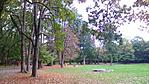 Csodálatos park