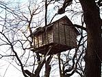 Ház a fa tetején  Forrás: GCHAFT ládaoldal